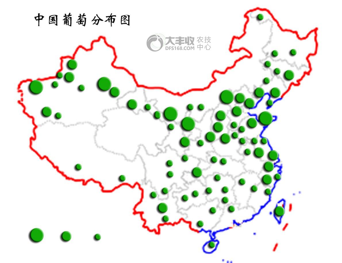 中国葡萄分布图.png