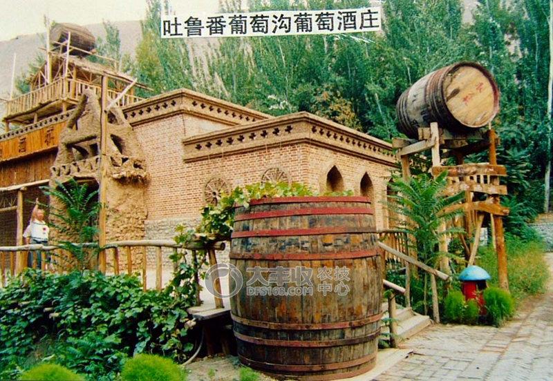 吐鲁番葡萄与观光旅游结合.jpg
