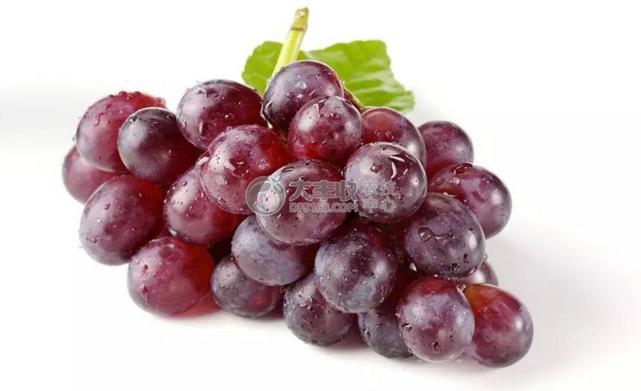 浆果之王葡萄